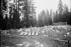 Ebenalm (svnsmts) Tags: 35mm dachstein austria canon a35f kosmofoto kodak portra400 shotonfilm filmphotography analog gosau