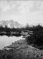Lockermoos (svnsmts) Tags: 35mm dachstein austria canon a35f kosmofoto kodak portra400 shotonfilm filmphotography analog gosau
