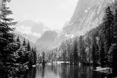 Lake in the Woods (svnsmts) Tags: 35mm dachstein austria canon a35f kosmofoto kodak portra400 shotonfilm filmphotography analog gosau