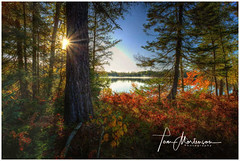 Lake Pleasant (Tom Mortenson) Tags: wisconsin lakepleasant highway45 fall autumn fallfoliage lake waterscape vilascounty conoverwisconsin usa northwoods midwest america canon scenery morning scene landscape hdr tonemapping photomatix northamerica sunrise sunflare canoneos canon6d