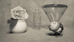 Vase with Flower and Wind-up Toy (DayBreak.Images) Tags: tabletop stilllife vase flower bottle conical glass tin vintage windup rabbit toy canondslr lensbabysweet35 ringlight lightroom bw preset creamtone
