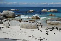 Südliches Afrika  - September 2019 (O!i aus F) Tags: afrika südafrika namibia osm k5 wüste