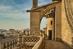 Catedral de Sevilla (jaseto2009) Tags: fe35mmf28za sonyilce7 sevilla andalucía españa catedraldesevilla
