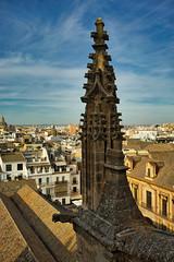 Pináculo - Catedral de Sevilla (jaseto2009) Tags: fe35mmf28za sonyilce7 sevilla andalucía españa catedraldesevilla pináculo