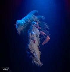 Feather Dancing (PhilR1000) Tags: circus burlesque feathers dance tattoo dark blue dancing lenamaelenman timelineevents