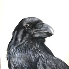 cuervo350x50 (luis lara cabrera) Tags: pintura painting art lara arte luis cuervo acrilico contemporaneo abstracto figurativo artista maestro rojo figuras shapes color colores