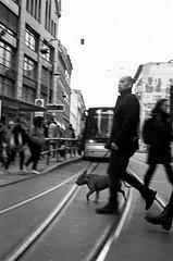 Berlin Street (Anton C.) Tags: filmphotography analoguephotography adofix adox analogue bw berlin blackwhite blackandwhite blanconegro black white cle film filmisnotdead filmmeanssomethingtous filmsnotdead germany ishootfilm kodak kodaktrix mitte monochrome minolta minoltacle people rodinal streetphotography streetlife selfdeveloped tx400 rokkorm40mmf2 dog rails