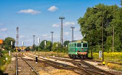 ST43-80 (TomaszPobrotyn) Tags: st43 st4380 pkp pkpcargo jawor podsudecka d29137 lato summer poland train rail railroad dolnośląskie sudety nikon nikond7100