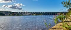 Royal Border Bridge (AreKev) Tags: royalborderbridge borderbridge bridge rivertweed railwayviaduct railway viaduct berwickupontweed markettown town northumberland northeast northeastengland england uk aurorahdr2019 hdr aurorahdr nikond850 nikon d850 sigmaartlens sigma1424mmf28dghsmart sigma 1424mm 1424mmf28dghsm