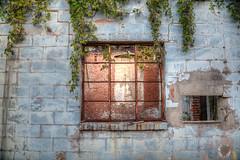Old & Forgotten (ap0013) Tags: unadilla georgia window abandoned abandon abandonment store mainstreet south southern old forgotten