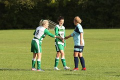 80 (Dale James Photo's) Tags: buckingham athletic football club ladies versus wantage town fc womens thames valley counties league division one moretonville sunday 6th october 2019 non