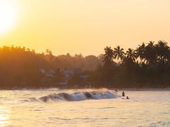 Mirissa beach, Sri Lanka (TeunJanssen) Tags: srilanka travel traveling worldtravel backpacking olympus omd omdem10 sunset beach wave palmtrees sun 75mm 75mmf18 surf surfing