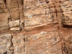 Cross-bedded sandstone (Glen Canyon Sandstone, Upper Triassic to Lower Jurassic; Dinosaur National Monument, Utah, USA) 14 (James St. John) Tags: glen canyon sandstone dinosaur national monument utah navajo nugget quartzose sandstones triassic jurassic cross bedding beds bedded crossbedding crossbedded crossbeds