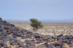 Südliches Afrika - September 2019 (O!i aus F) Tags: afrika namibia wüste osm k5