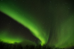 Abisko National Park (lui.adrian) Tags: snow winter artic circle lapland lap land sweden swedish svergie svenska travel europe northern lights aurora borealis kiruna abisko national park