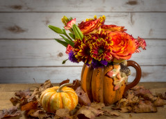 Pumpkin Pumpkin (lclower19) Tags: mug pumpkin flowers flora orange yellow green wood leaves odc container sb600 4052 522019 orton