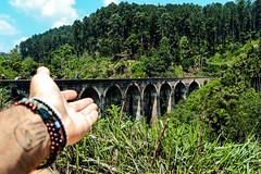9 Arch Bridge (Unique Tripz) Tags: srilanka travel trekking bridge heritage world hand manhand buddhist tatoo jungle green