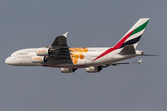 Emirates A380 Expo 2020 Orange (Martyn Cartledge / www.aspphotography.net) Tags: a380 a6eob aerodrome aeroplane air airbus aircraft airline airliner airplane airport aspphotography aviation cartledge civilairline civilairliner dubai dxb emirates expo2020 flight fly flying flywinglets jet martyn orange plane runway transport wwwaspphotographynet wwwflywingletscom uk asp photography