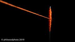 365-2019-282 - Thread bound (phil wood photo) Tags: 365 365colorfun 365colourfun bound closeup color365 colour365 day282 extensiontubes macro needle october orange singlestrobe thread