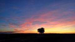 Sunset in October (geza079) Tags: moto g5