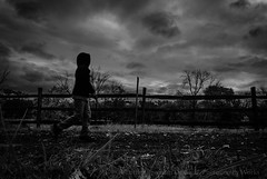 To The Pumpkin Patch (Luther Roseman Dease, II) Tags: monochrome outdoors grey clouds sky walking pumpkin patch public angle texture depth light lines humanelement mood rainy weather discovery form bw noireetblanc blackandwhite fotografie fineartphotography movement candid contrast narrative
