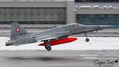 Swiss Air Force F-5E Tiger II (Caspar Smit) Tags: swiss f5 tiger j3074 airforce airplane aircraft fighter jet sion wef nikon d7000 lsms fliegerstaffel