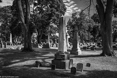Big Mamma and the Herd (Jim Frazier) Tags: 2019 20190810bluffcitycemetery 3d3layer bw bluffcitycemetery elgin afternoonlight antique atmospheric august blackandwhite bluesky cemetary cemeteries cemetery classic cook deepdepthoffield desaturated diagonals framing grass graves gravesmarkers gravesites gravestone graveyards heritage historic historical history il illinois jimfraziercom landscape lawn limestone loadcode201910 marble memorials monochrome monuments nature obelisk old q4 scenery scenic shadows sizeover1000 stones summer sunny texture tombs tombstones trees triangles verticals vintage f10