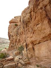 Glen Canyon Sandstone (Upper Triassic to Lower Jurassic; Dinosaur National Monument, Utah, USA) 25 (James St. John) Tags: glen canyon sandstone dinosaur national monument utah navajo nugget quartzose sandstones triassic jurassic