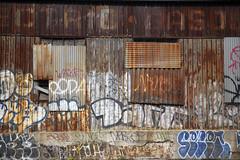 Rusty Wall (milfodd) Tags: july 2019 nyc grafitti rust wall