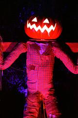 Jack's Pumpkin Glow - Washington, DC (49) (Photography - Memorabilia - FAPD) Tags: nikon d3500 pumpkin glow jacks jack o lantern scary creepy erie spooky orange dinosaur dark reston virginia washington dc 2019 capitals disney painting scare crow haunted cemetery marvel princess ghost ship castle
