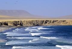 PARACAS, PERU _DSC1003-3 - (german_galvez) Tags: playa mar oceano oceanopacifico peru paracas desierto pacificocean sea azzurro bleu mare mer azul blue paisaje marina landscape