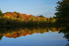 Stillwater Evening (hessamt) Tags: fallfoliage autumncolors reflection stillwaterriver oronomaine universityofmaine orange yellow blue calm serene mirror polarizer moon dusk