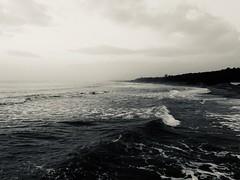 iph8101 (gzammarchi) Tags: italia mare natura paesaggio ravenna alba bn onda litorale lidodidante explore