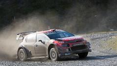 Citroen C3 WRC - Ogier (rallysprott) Tags: sprott wdcc rallysprott 2019 wales rally gb penmachno 2 forest rallying motor sport wrc nikon d7100 citroen c£ ogier