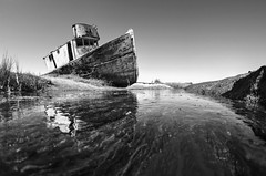 Stuck in the future (PeterThoeny) Tags: inverness pointreyes northerncalifornia california usa ship shipwreck abandoned creek water reflection waterreflection algae sky day clear outdoor monochrome blackandwhite sony sonya7 a7 a7ii a7mii alpha7mii ilce7m2 fullframe rokinon12mmf28 fisheye fisheyelens wideangle 1xp raw photomatix hdr qualityhdr qualityhdrphotography fav200