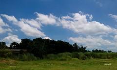 Beauty of Nature! (Sheuli Hossain) Tags: sky nature places playground mobilephotography landscape bangladesh