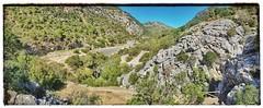 Barranco de Las Buitreras , Puente De Las Alemanes (ranp121) Tags: cañon canyon gaucin cortes dela frontera el colmenar bridge puente alemanes vultures buitreras