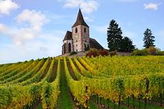 Hunawihr (Haut-Rhin, F) (pietro68bleu) Tags: village églisefortifiée clocher vignes vignoble automne church composition europe france alsace