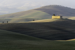 Which Do YOU Think is Best?  Tuscany Farmhouse and Olive Grove Post-Dawn  - Tuscany Details 28 (John Hallam Images) Tags: tuscan farmhouse olive grove best post dawn light shade tuscany details 28