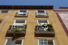 windows and balconies (Lucie Maru) Tags: windows windowsandbalconies glass architecture houses house urban dwelling structure lookup