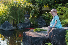 Young Girl and Pond (Himeji, Japan) (dalenolanjr) Tags: himeji himejijapan japan girl blue garden fish flowers rock landscape landscaping japanesegarden young toddler travel abroad caucasian dress bluedress barefoot sitting outdoors outside pond fishpond orange coy coypond japanesecoy asiancoy