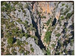 Spark eye view Cañon de las Buitreras, Cortes De La Frontera (ranp121) Tags: cañon buitreras gaucin canyon gorge cortes de la frontera el colmenar vultures bridge puente alemanes serrania ronda