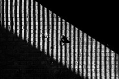 beenBerlin - Diagonal (gioko206) Tags: shadow streetphotography architecture bw bn berlin bianconero berlino diagonal