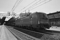 milano area settembre 2019 #55 (train_spotting) Tags: milanorogoredo lenord ferrovienordmilano nordcargo dbcargoitaliasrl vectrondc vectron e1910203inc siemens nikond7100