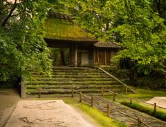Honen-in (Tim Ravenscroft) Tags: honenin kyoto entrance gate thatched zen garden maples foliage steps hasselblad hasselbladx1d