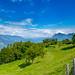 Lago d'Iseo 2019 - Monte isola