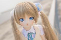 Stupidly cute (Sugar Lokifer) Tags: sasara kusugawa dds dollfie dream sister volks balljointdoll bjd ball jointed doll jp toheart2 heart