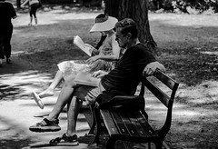 Reading (Nun Nicer Artist) Tags: centralpark newyork manhattan streetphotography 35mm nunnicer city park parkbench 35mmstreetphotography travel outdoors