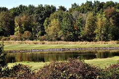FARM LANDSCAPE (MIKECNY) Tags: water pond landscape wooded trees ellmsfamilyfarm