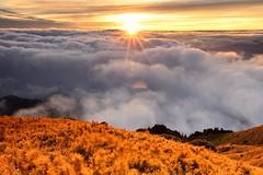 @合歡山_Hehuanshan (monbydick) Tags: hehuanmountain hehuanshan monbydick nikond600 tamron1530mmf28 formosataiwan taiwan sunset seaofclouds 合歡主峰 合歡山 雲海 夕陽